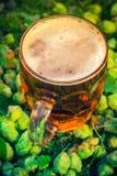 Coni di luppolo del fondo della birra fredda della pinta Fotografie Stock Libere da Diritti