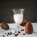 Coni di vetro del latte e del cedro del vegano dei pinoli Priorità bassa bianca Fotografie Stock Libere da Diritti