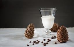 Coni di vetro del latte e del cedro del vegano dei pinoli Priorità bassa bianca Del vegetariano latte organico dei dadi del diari Immagini Stock