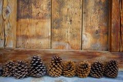 Coni e legno del pino Fotografie Stock