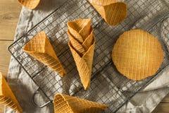 Coni gelati casalinghi croccanti della cialda Fotografia Stock