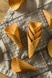 Coni gelati casalinghi croccanti della cialda immagini stock libere da diritti