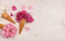 Coni gelati con i fiori dell'ortensia Immagini Stock