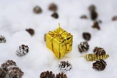 Coni nella neve Fotografie Stock