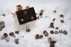 Coni nella neve Fotografia Stock Libera da Diritti