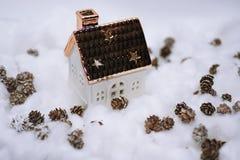Coni nella neve Fotografia Stock