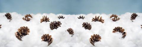 Coni nella neve Macro foto dei coni decorativi Immagini Stock