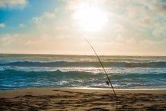 Coni retinici di pesca immagine stock