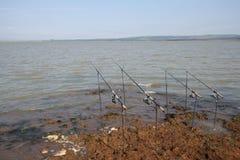 Coni retinici di pesca sul paesaggio dei basamenti immagini stock libere da diritti