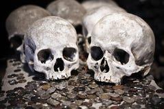 conia i crani Immagine Stock Libera da Diritti