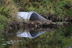 A conical frame added to the end of culvert. To prevent beavers from completely blocking it by building a dam, culture, environment, grass, green, metal stock images