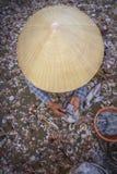 Conical kapelusz Zdjęcie Royalty Free