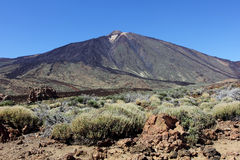 The conical volcano Mount Teide Stock Images