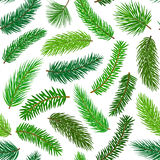 Conifer evergreen pine fir cedar needle branches twigs seamless pattern Stock Photo