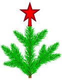 Conifer tree with star Stock Images