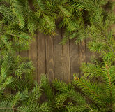 Conifer wreath background Royalty Free Stock Photography