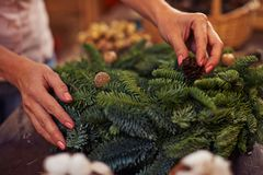 Conifer wreath Stock Images