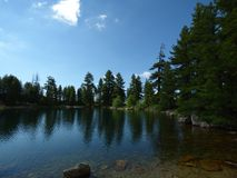 Conifere e lago della montagna Il Montenegro, alpi di Dinaric Immagini Stock Libere da Diritti