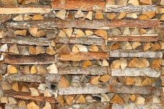 Coniferous и лиственная древесина штабелированная в куче Стоковое Изображение RF