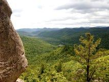 Coniferous лес от верхней части горы Стоковая Фотография RF