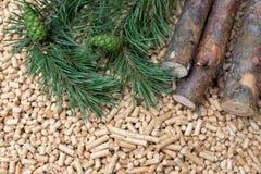 Coniferous biomass - conch, fir, pine, wood, biomass. Renewable energy stock photography