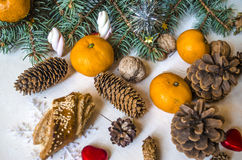 Coniferous branch with tangerines, pine cones with sweets. On light table Royalty Free Stock Photography