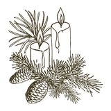 Coniferous branches of trees with cones: pine, spruce, fir, cypr. Ess, cedar. Christmas decoration with candles. Hand drawn  illustration on a white background Royalty Free Stock Image