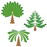 Coniferous, deciduous tree and palm Royalty Free Stock Image