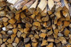 Coniferous and deciduous wood stacked in a pile Royalty Free Stock Images