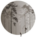 Coniferous forest. With birds, circle stock illustration