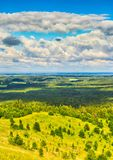 Coniferous forest and meadows. Royalty Free Stock Images