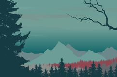 Coniferous forest in mountain landscape under night sky. Vector Stock Photo
