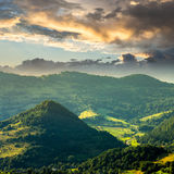 Coniferous forest on a  mountain slope at sunrise Royalty Free Stock Photo