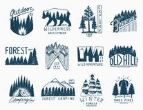Coniferous forest, mountains and wooden logo. camping and wild nature. landscapes with pine trees and hills. emblem or Stock Image
