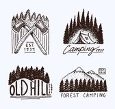 Coniferous forest, mountains and wooden logo. camping and wild nature. landscapes with pine trees and hills. emblem or Stock Photography