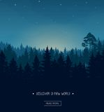 Coniferous forest silhouette template. Coniferous forest silhouette background image with nightime stars and rays of the sunset royalty free illustration
