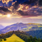Coniferous forest on a steep mountain slope at sunset Stock Photo