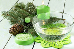 Coniferous SPA composition Royalty Free Stock Photos