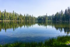 Free Coniferous Trees Forest Reflected In The Calm Waters Of Summit Lake, Lassen Volcanic National Park, Northern California Stock Photography - 135819692