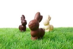 Conigli del cioccolato Fotografia Stock Libera da Diritti
