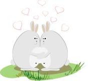 Conigli di amore Fotografia Stock