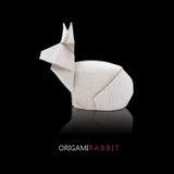 Conigli di carta di origami Fotografie Stock Libere da Diritti