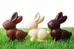 Conigli di Pasqua Fotografie Stock