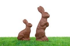 Conigli di Pasqua del cioccolato Fotografie Stock Libere da Diritti