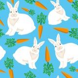 Conigli e carote su un fondo blu royalty illustrazione gratis