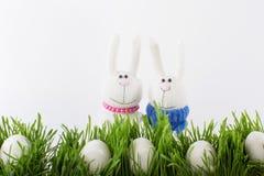 Conigli ed uova di Pasqua Immagine Stock Libera da Diritti