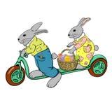 Conigli sul motorino Fotografia Stock Libera da Diritti