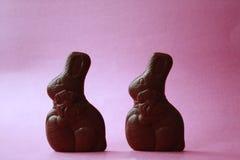 Coniglietti del cioccolato Immagine Stock