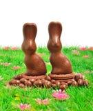 Coniglietti del cioccolato di Pasqua sull'erba verde immagini stock