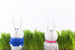 Coniglietti di pasqua sul fondo dell'erba verde Immagine Stock